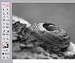 A grayscale kép