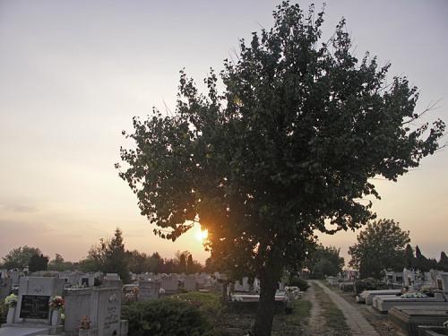 Nagyszénási temető