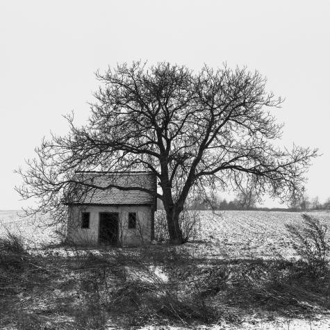 2011-02-25-23754