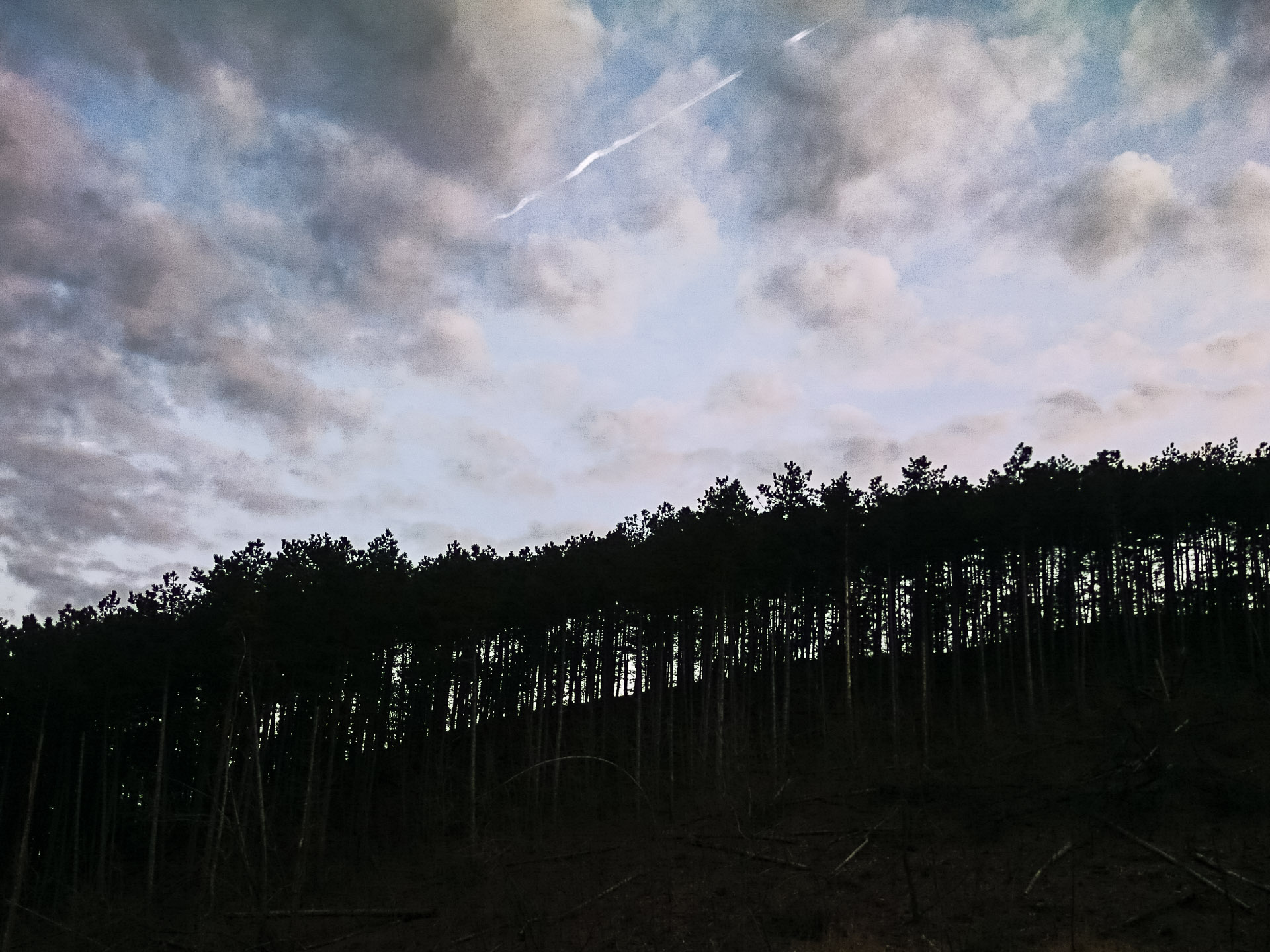 2016-04-02-43939