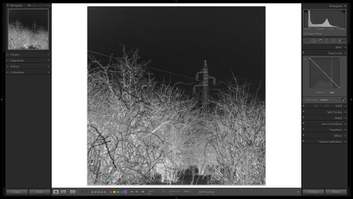 digitalis_negativ_lightroomban